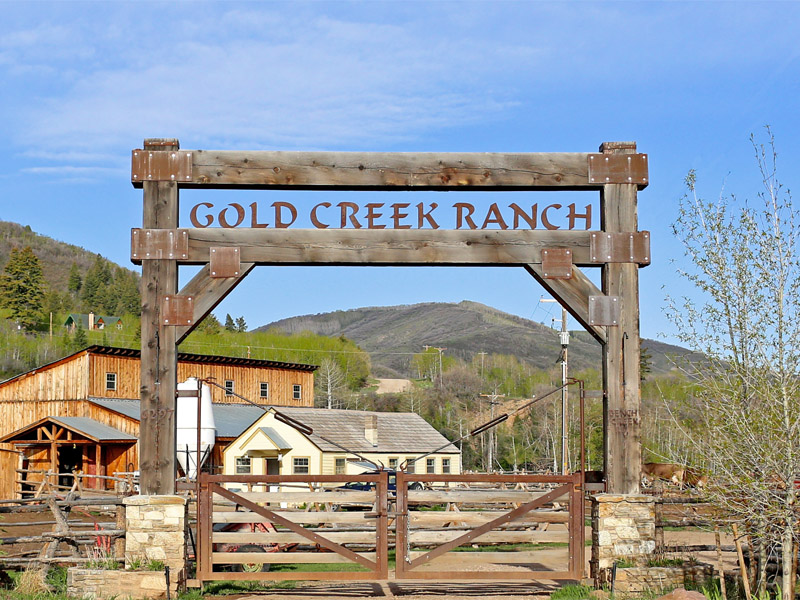 Ranch & Animals