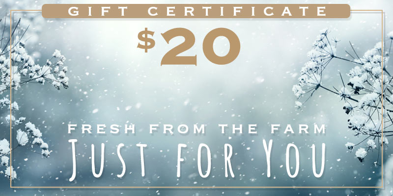 $20 gift certificate snow flowers